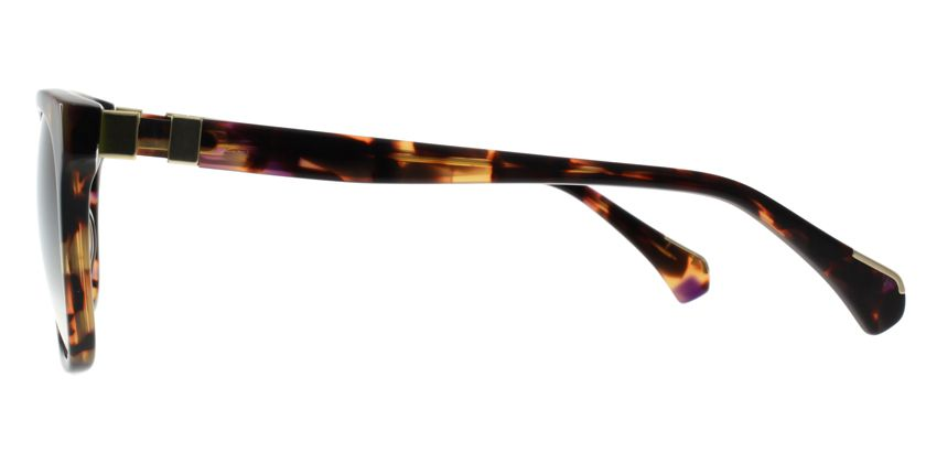 Anson Benson AB2025S042H Sunglasses - Side View