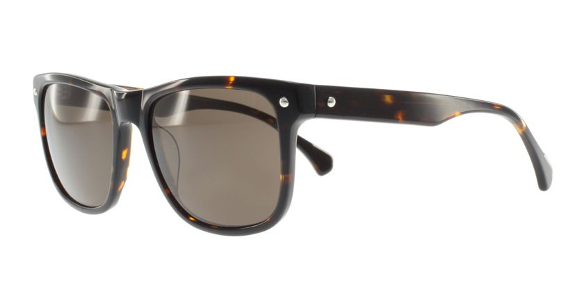 Anson Benson AB2032S022 Sunglasses - 45 Degree View