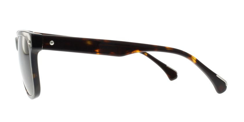 Anson Benson AB2032S022 Sunglasses - Side View