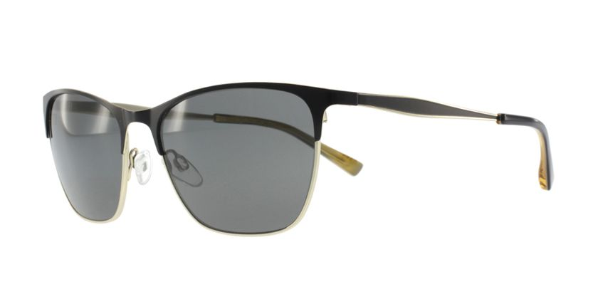 Anson Benson BL2003S001 Sunglasses - 45 Degree View