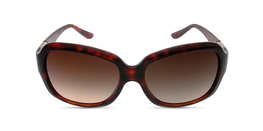 Bvlgari BV8110B96713 Sunglasses - Front View