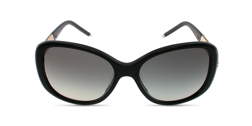 Bvlgari BV8114A50111 Sunglasses - Front View