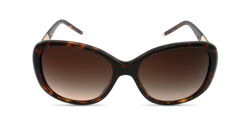 Bvlgari BV8114A50413 Sunglasses - Front View