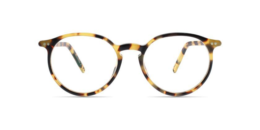Lunor MOD231C16 Eyeglasses - Front View